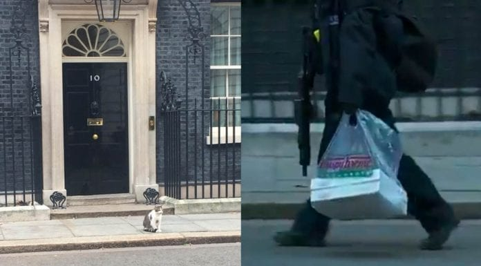 A Doughnut of a Deal – Theresa May gets Krispy Kremes delivered – That Theresa May has resorted to dishing out doughnuts represents what a Dodo her deal truly is.