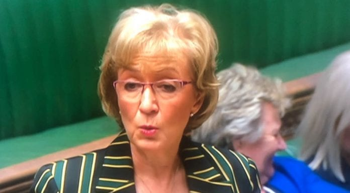 "The Pizza Prat – Andrea Leadsom MP – Leader of the House Andrea 'Loathsome' Leadsom's ""pizza club"" is indicative of how low the British political classes have stooped."
