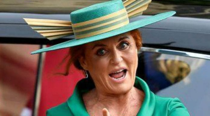 "The Duchess of Dork – Duchess of York claims Epstein saga ""nonsense"" – That the Duchess of York claims the Jeffrey Epstein scandal to be ""nonsense"" sums up how much of an out of touch fruitcake she truly is."