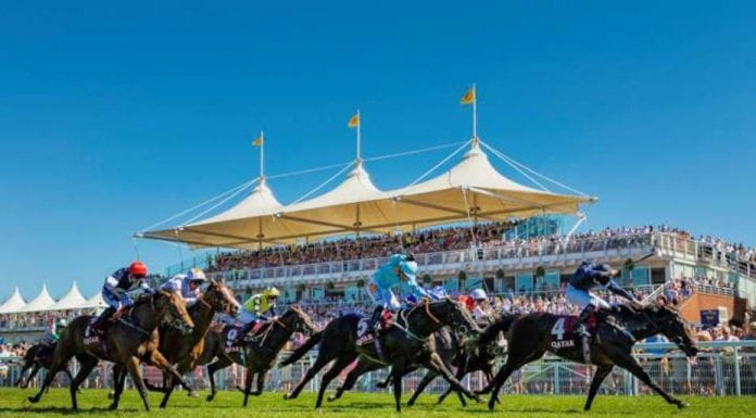 Runners & Riders – Thursday 1st August – The Steeple Times reintroduces its horse racing tips with an analysis of the top tipsters and their selections for Glorious Goodwood and Nottingham