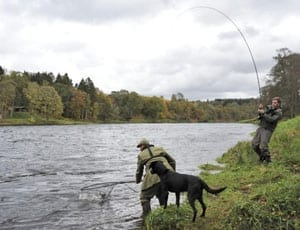Gone fishing – The Taymount Fishings – £145,000 or £2,013 per year – Salmon and sea trout fishing for sale