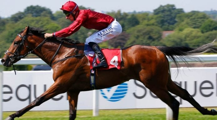 Runners & Riders – Horse racing tips for Wednesday 21st August – The Steeple Times' horse racing tips with an analysis of the top tipsters and their selections for today's racing at the Ebor Festival.
