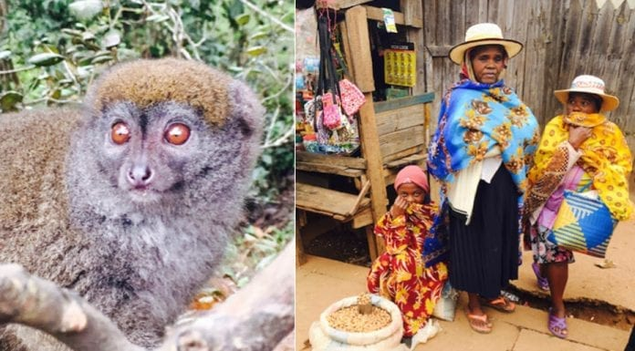 Madness in Madagascar – Visit this special country before it declines – Author and travel writer Sarah Tucker visits Madagascar and laments its future.