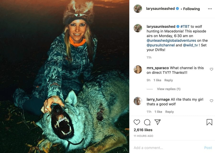 Monster of the Moment – Larysa Switlyk kills wolf and Coke's hartebeest – Massacring monster Larysa Switlyk boasts about killing an endangered Coke's hartebeest and a wolf also; she shares such for personal profit and frankly Instagram should be ashamed of itself for enabling her.