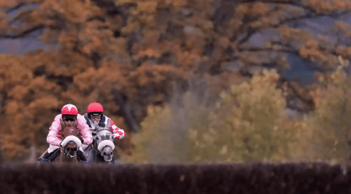 Runners & Riders – The Tingle Creek Chase 2020 at Sandown – 'The Steeple Times' shares an analysis of the top tipsters and their selections for the 'Betfair Tingle Creek Chase 2020' at Sandown in the wake of Altior being pulled out.