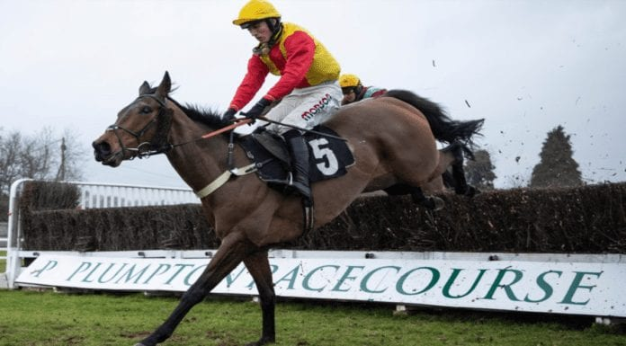 Runners & Riders – Welsh Grand National 2020 – 'The Steeple Times' examines the tipsters' selections and offers a couple of options for the rescheduled Welsh Grand National 2020 at Chepstow.