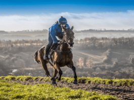 Runners & Riders – The Classic Chase 2021 at Warwick – 'The Steeple Times' examines the tipsters' selections and offers 4 options for The Classic Chase 2021 at Warwick – as well as a 15/1 at Market Rasen.