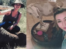 40,000 turn on Merelize van der Merwe – Change.org petition – As our Change.org petition seeking to ban giraffe slayer Merelize van der Merwe tops 40,000 signatures, the psycho publicity addict shared a CBS documentary of another monster killing a giraffe.