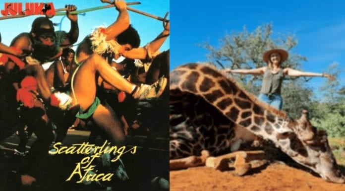 No 'Scatterlings of Africa' for Merelize van der Merwe in 2021 – Merelize van der Merwe's video accompanied by Johnny Clegg's 'Scatterlings of Africa' music of her slaughtering a majestic giraffe is removed from YouTube for copyright infringement.