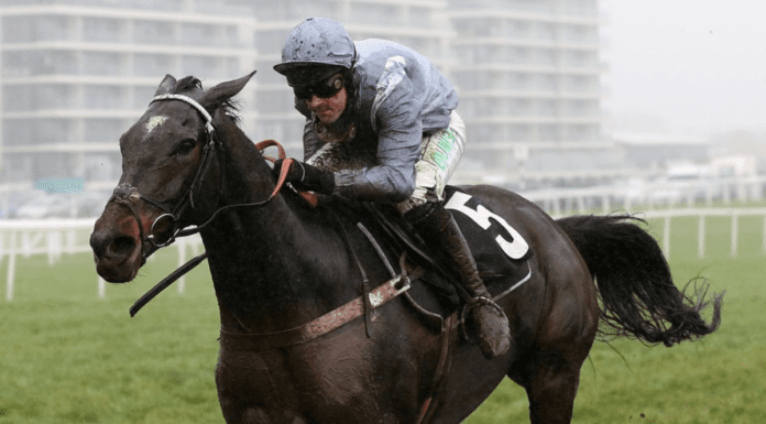 Runners & Riders – The Cheltenham Gold Cup 2021 – 'The Steeple Times' examines the tipsters' selections and offers 3 options for today's Cheltenham Gold Cup – as well as an 80/1 outsider in a later race.
