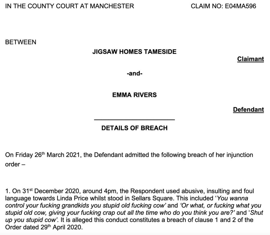 Courting Expletives 2021 – Emma Rivers v Jigsaw Homes Tameside – Extraordinary official civil judgment from the County Court at Manchester packed with expletives sums up the state of once Great Britain; one is simply left wondering if potty mouthed Emma Rivers was trained by the creosoted napkin slapper Dawn Ward.