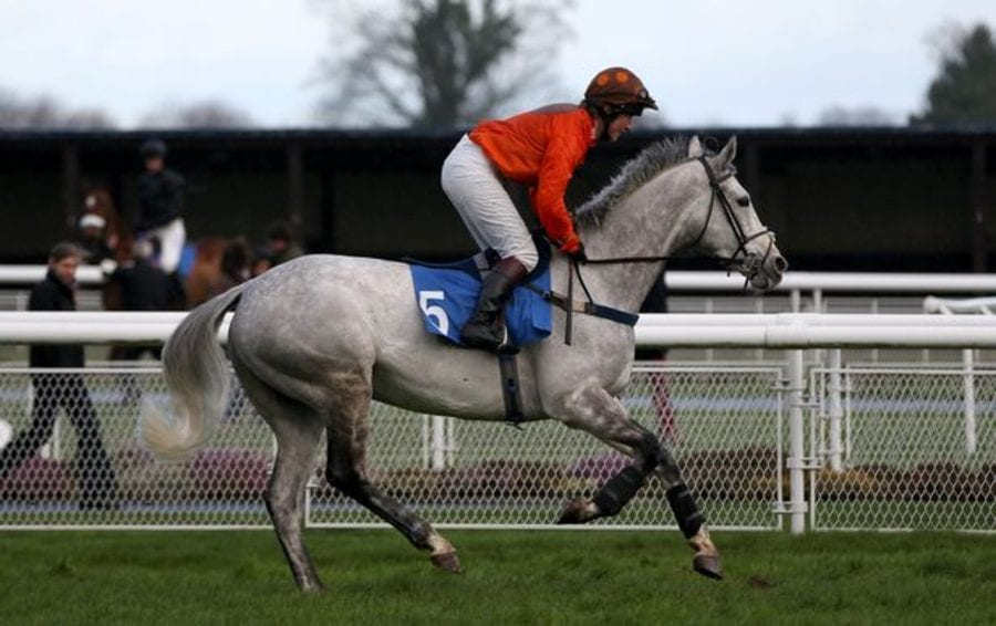 Lauding Lorna Brooke 2021 – Launa Brooke to be remembered at Cheltenham – Cheltenham to quite rightly honour the life of the jockey Lorna Brooke with a race named in the late 37-year-old's honour on 30th April 2021.