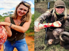 The Slaying Sisters Sulk 2021 – Merelize van der Merwe & Larysa Switlyk – 'The Steeple Times's' campaign against endangered species slaying Merelize van der Merwe and Larysa Switlyk has plainly really got to them; the sulky pair have set their attack dogs on us.