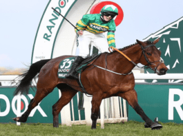 Heroine of the Hour 2021 – Irish jockey Rachael Blackmore – In becoming the first woman ever to win the Grand National, Rachael Blackmore has brought much needed joy to the racing world.